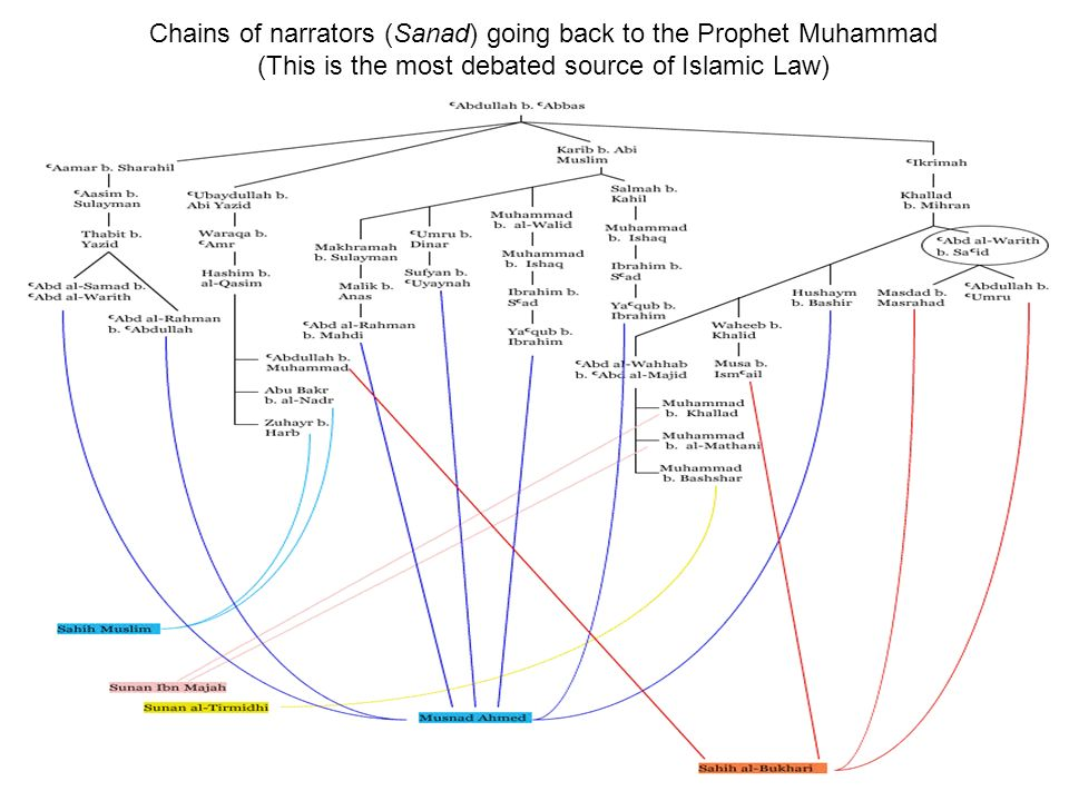 Chains of narrators (Sanad) going back to the Prophet Muhammad (This is the most debated source of Islamic Law)