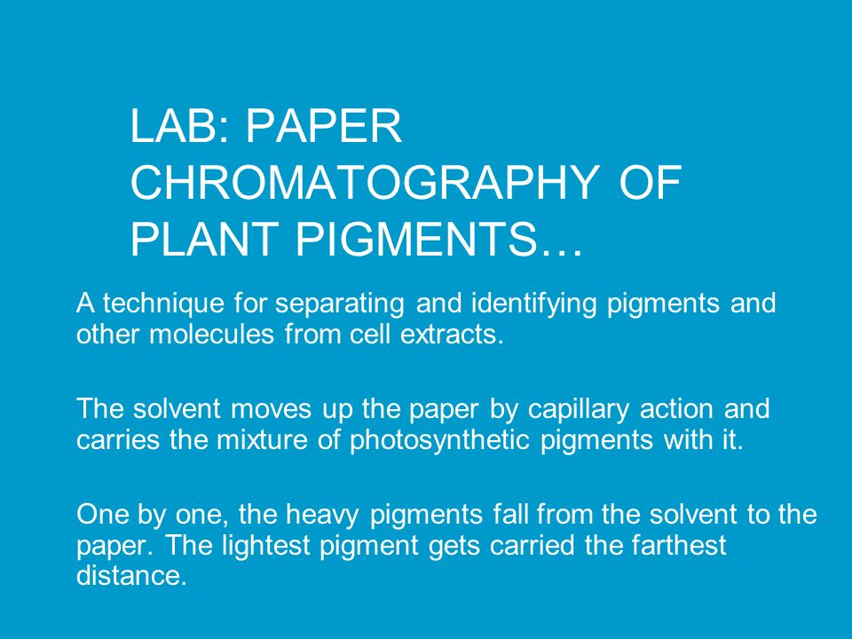 plant pigment chromatography lab Separation of plant pigments using plant pigment: distance explain how a crime lab could use paper chromatography to determine if lipstick found at a crime.