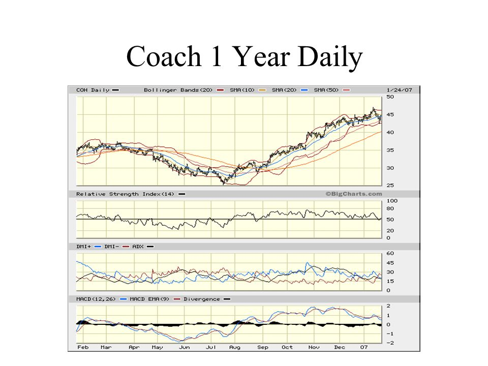 Coach 1 Year Daily