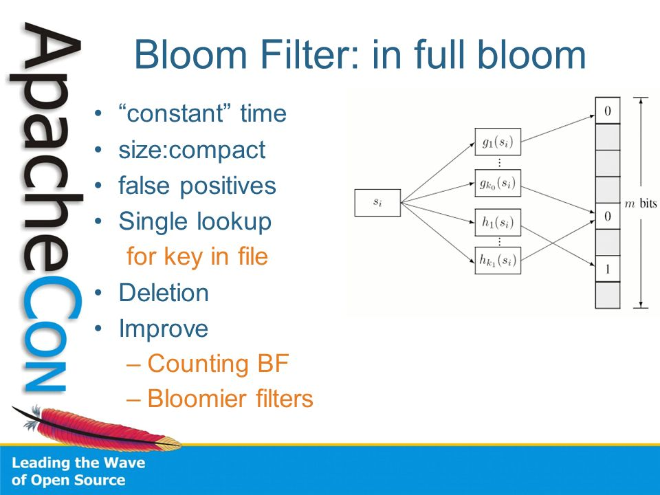 Bloom Filter: in full bloom