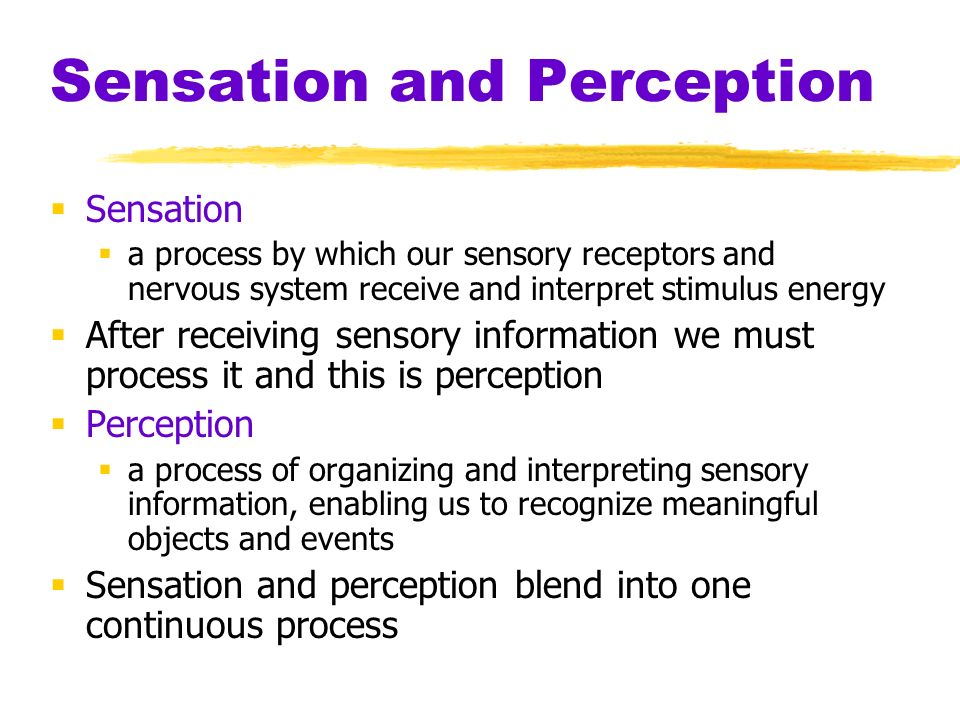 difference between sensation and perception pdf