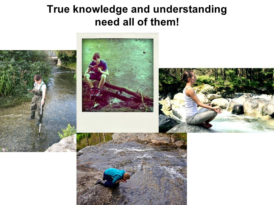 True knowledge and understanding need all of them!