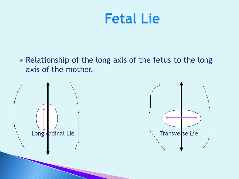 Fetal Lie Relationship of the long axis of the fetus to the long axis of the mother.