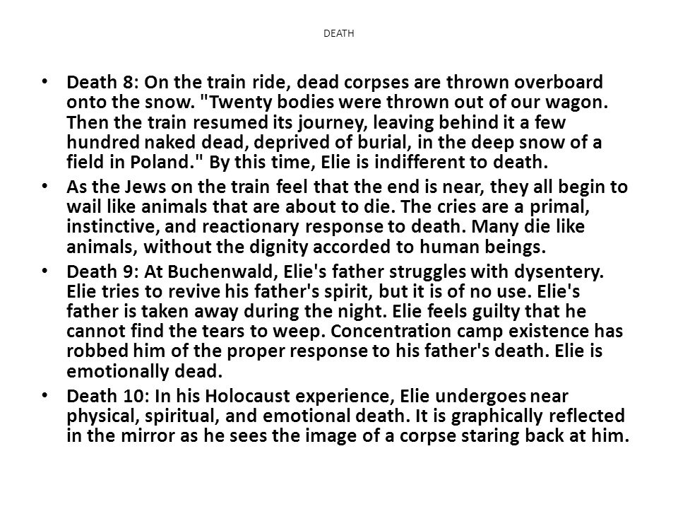 faith and religion taken away by the nazis in night by ellie wiesel Night study guide contains a biography of elie wiesel, literature essays, quiz questions, major themes, characters, and a full summary and analysis.