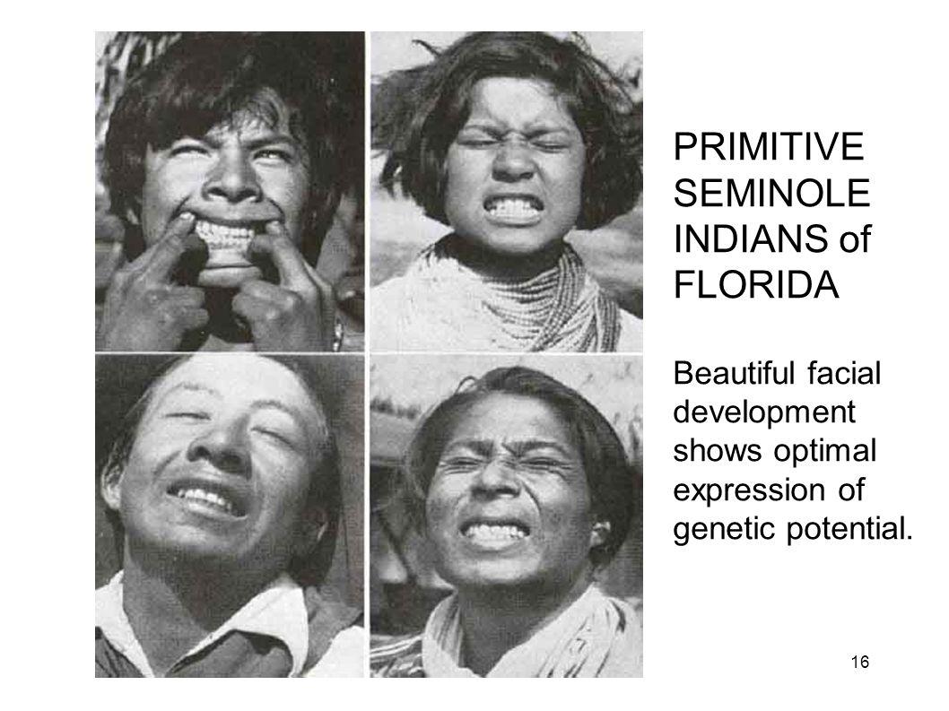 Primitive Seminoles PRIMITIVE SEMINOLE INDIANS of FLORIDA