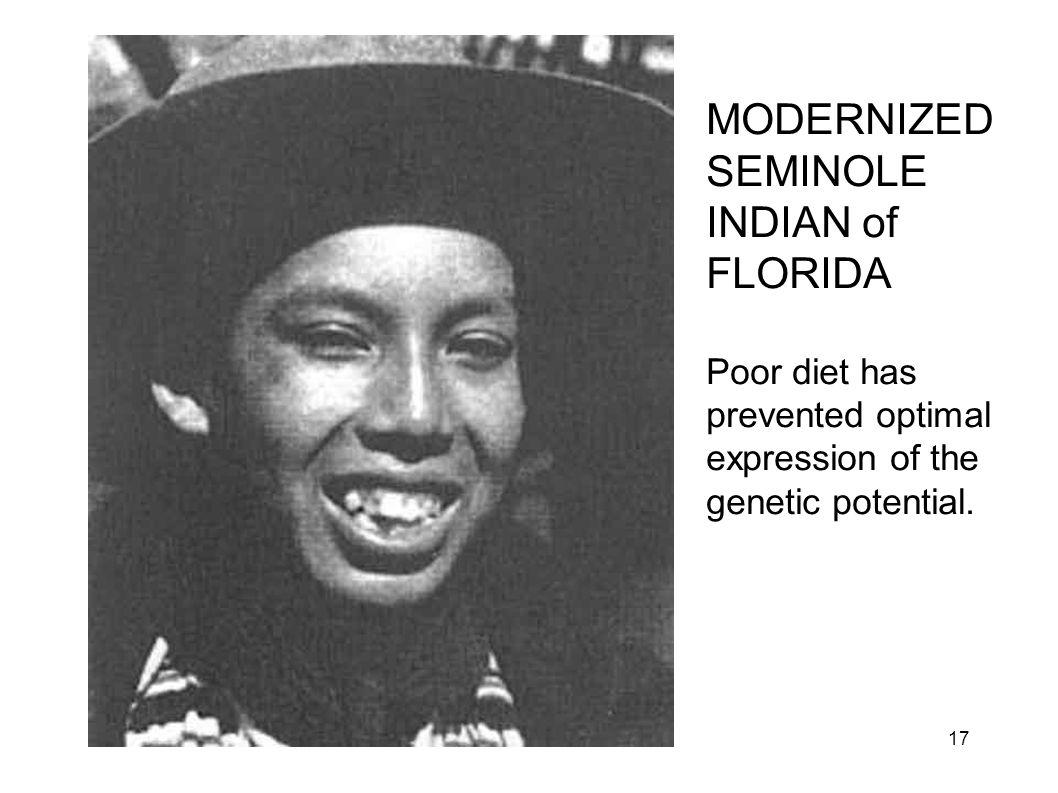 MODERNIZED SEMINOLE INDIAN of FLORIDA