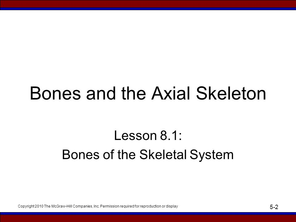PowerPoint to accompany Essentials of Medical Language Allan ...