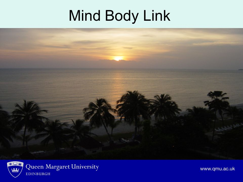 Mind Body Link