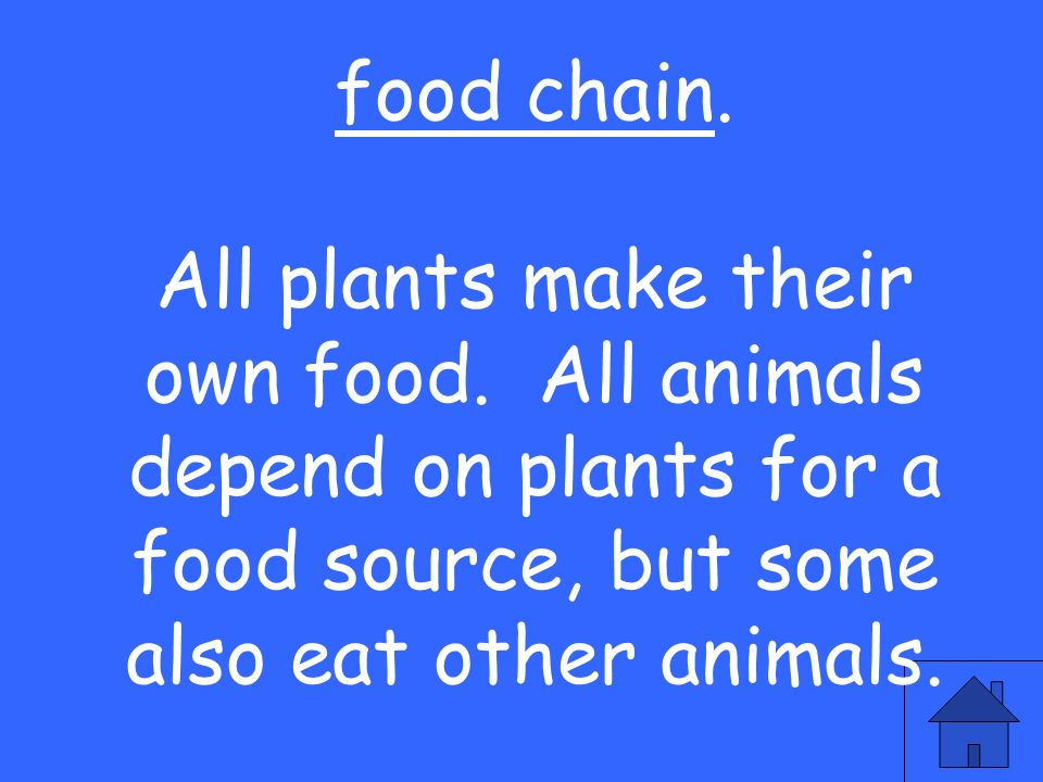 food chain. All plants make their own food