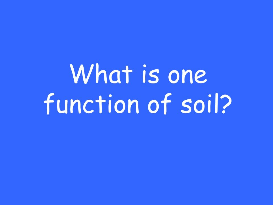 What is one function of soil