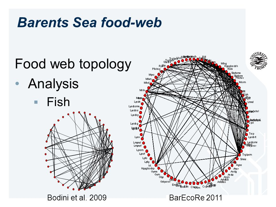 Barents Sea food-web Food web topology Analysis Fish