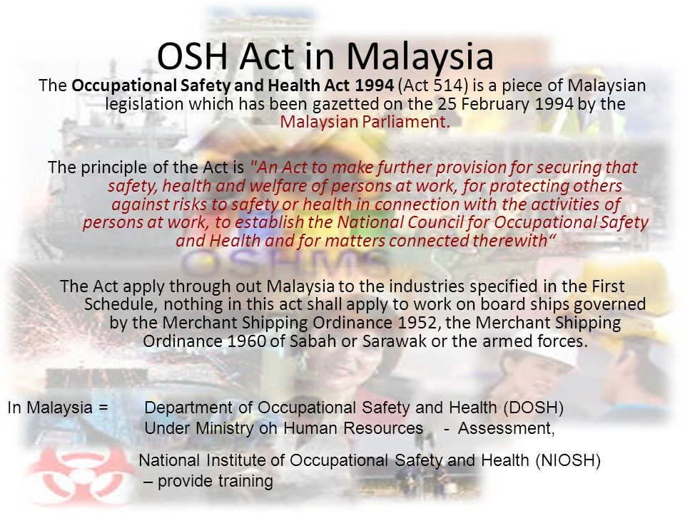 legislative in malaysia