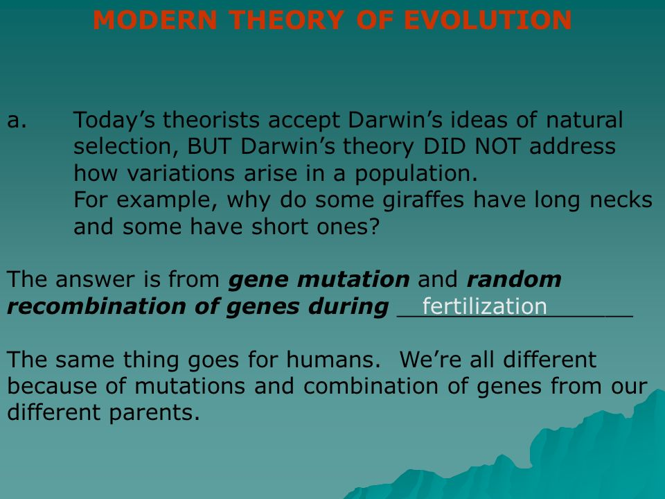 Are Evolution And Natural Selection The Same Thing