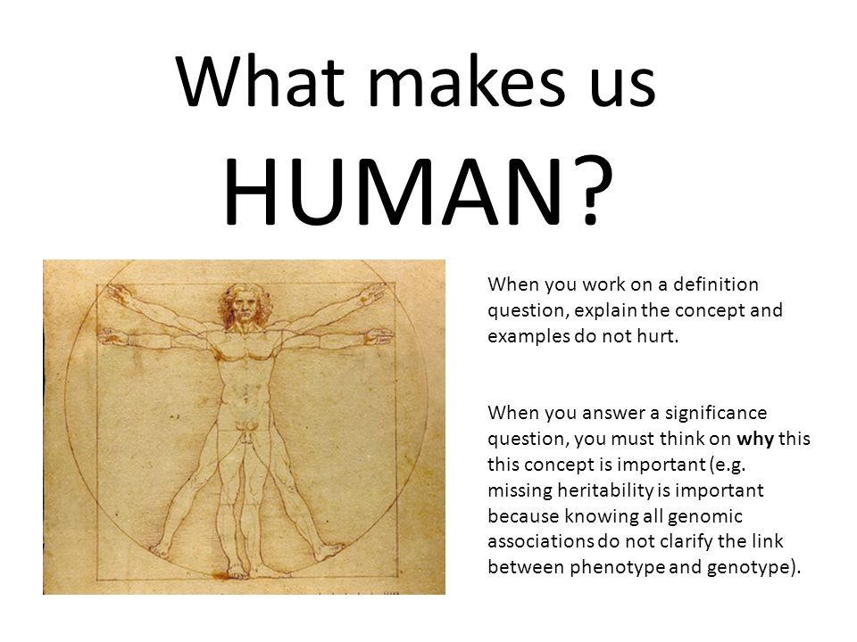 what makes us humans