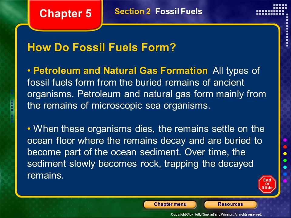 How Do Microscopic Sea Organisms Form Petroleum And Natural Gas