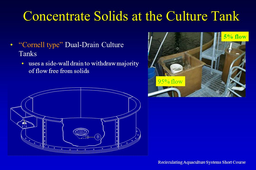 Concentrate Solids at the Culture Tank