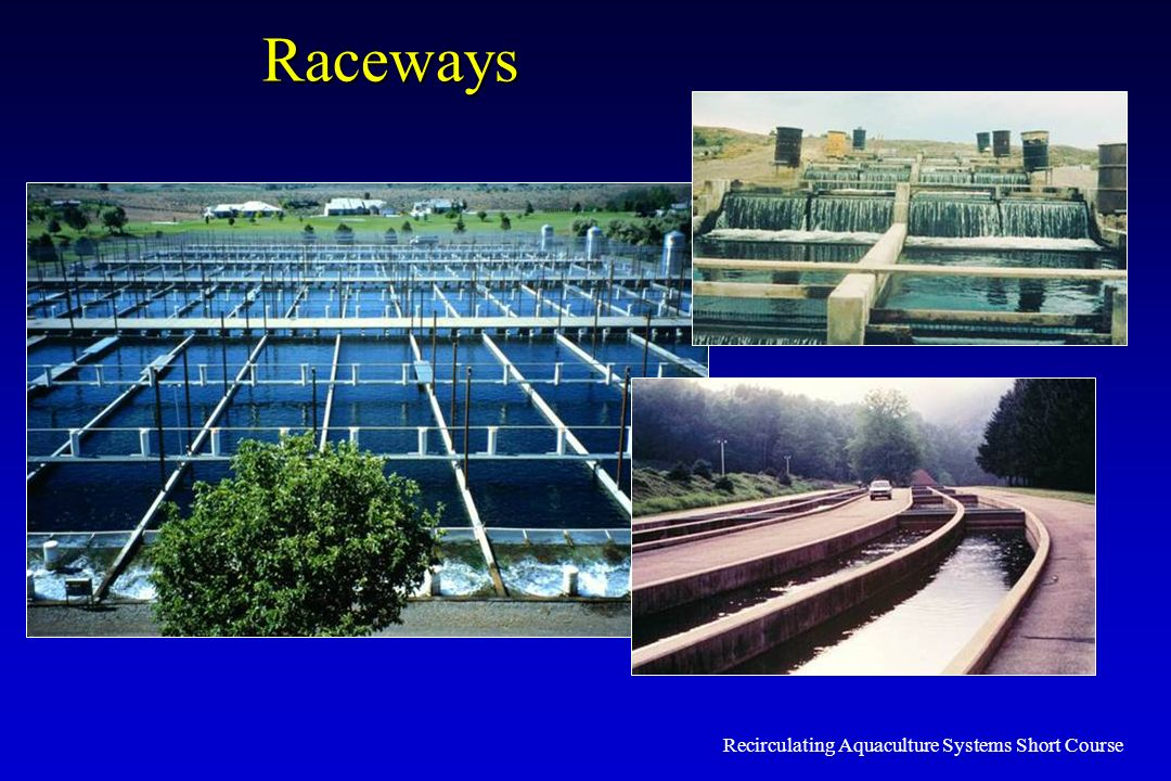 Recirculating Aquaculture Systems Short Course