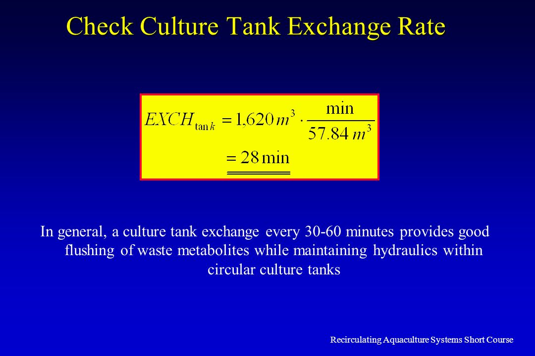 Check Culture Tank Exchange Rate