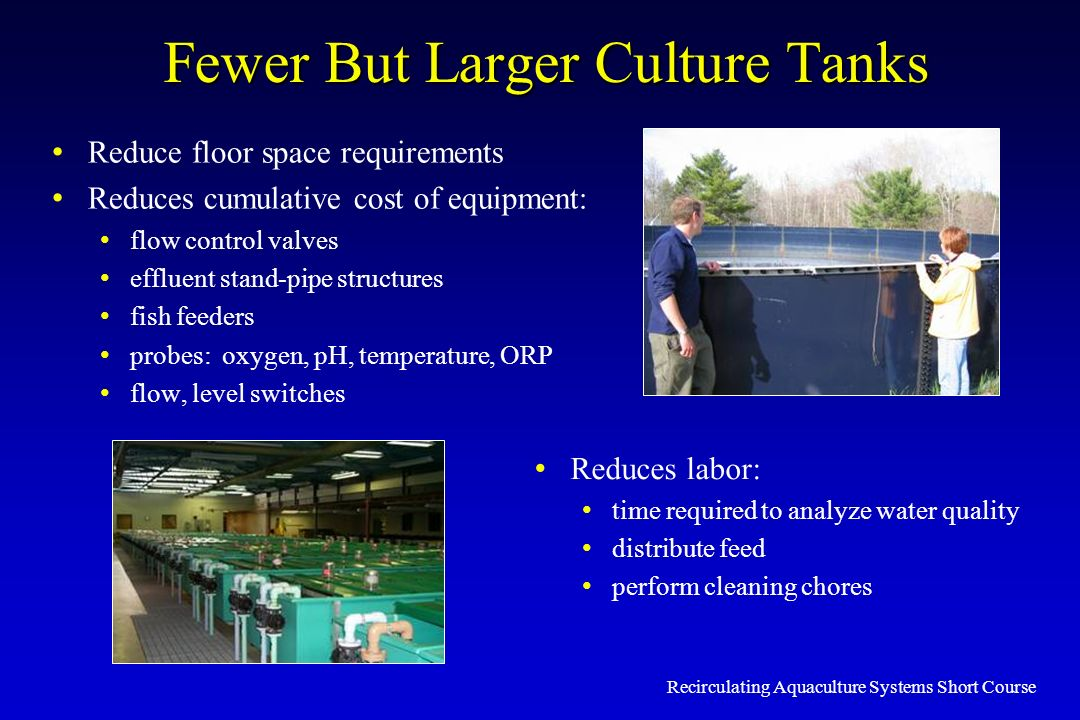 Fewer But Larger Culture Tanks