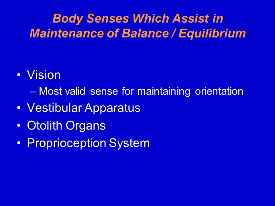Body Senses Which Assist in Maintenance of Balance / Equilibrium