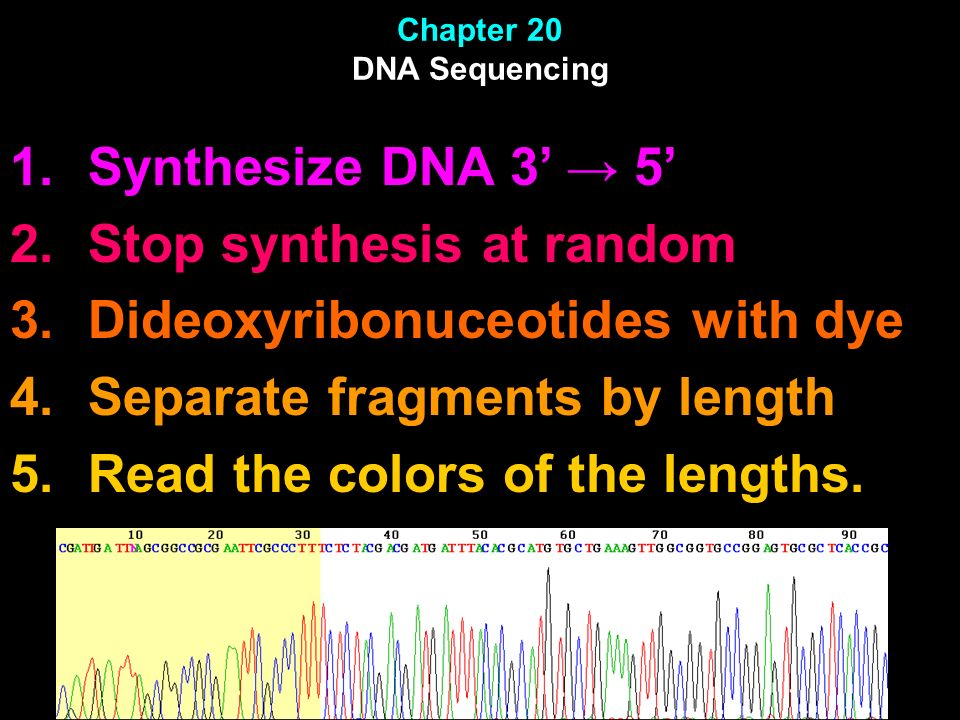 Chapter 20 DNA Sequencing