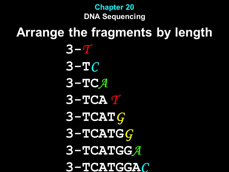 Chapter 20 DNA Sequencing Arrange the fragments by length