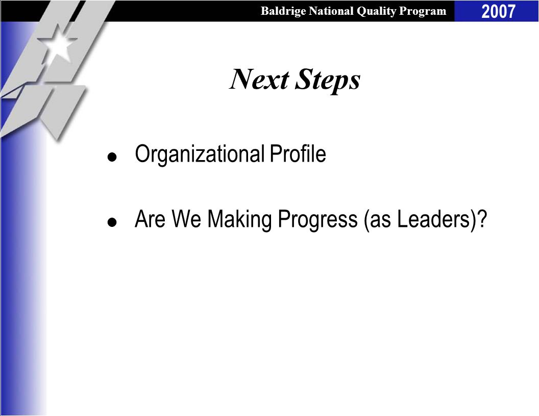 Next Steps Organizational Profile Are We Making Progress (as Leaders)