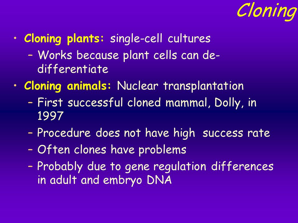 10 Marked Advantages and Disadvantages of Cloning Animals