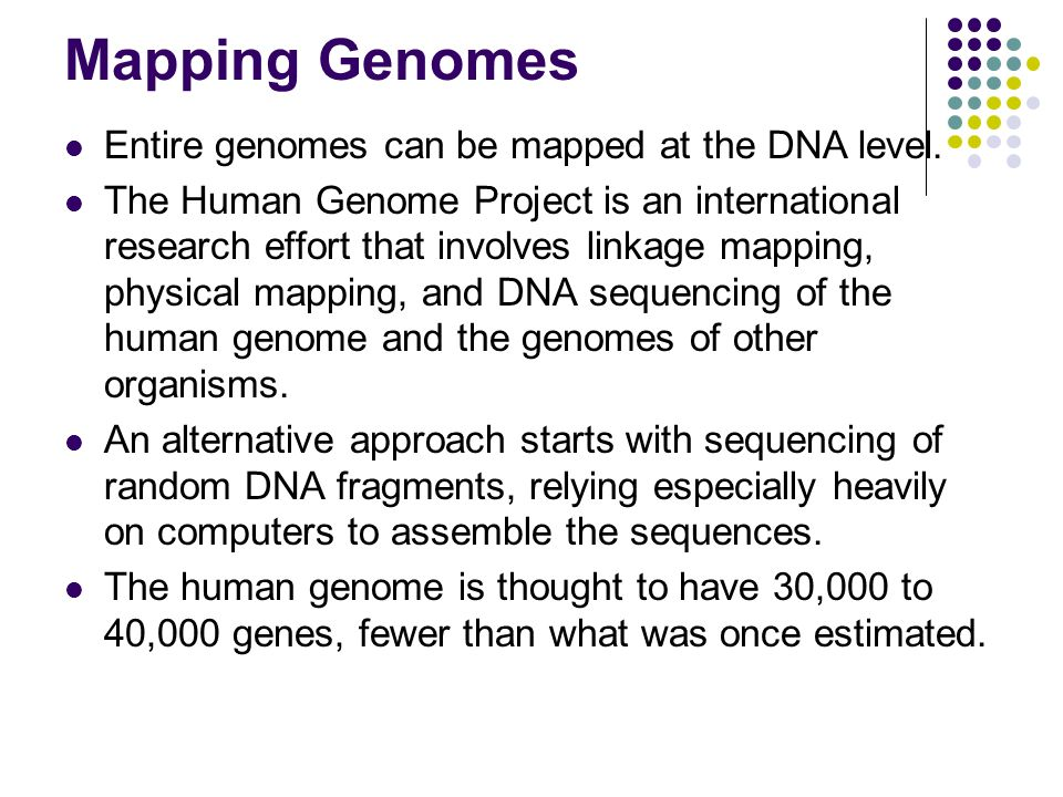 Mapping Genomes Entire genomes can be mapped at the DNA level.
