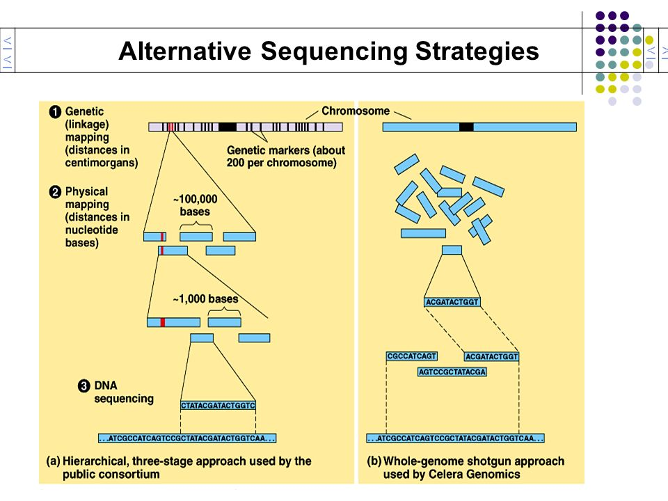 Alternative Sequencing Strategies