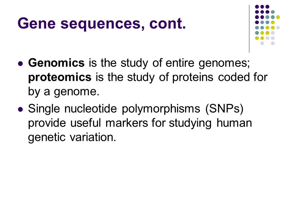 Gene sequences, cont. Genomics is the study of entire genomes; proteomics is the study of proteins coded for by a genome.