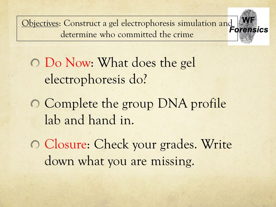 gel electrophoresis lab write up Procedure: hard concept: hard this experiment contains toxic chemicals as  well as extreme sterilization condition please refer to the safety section for  careful.