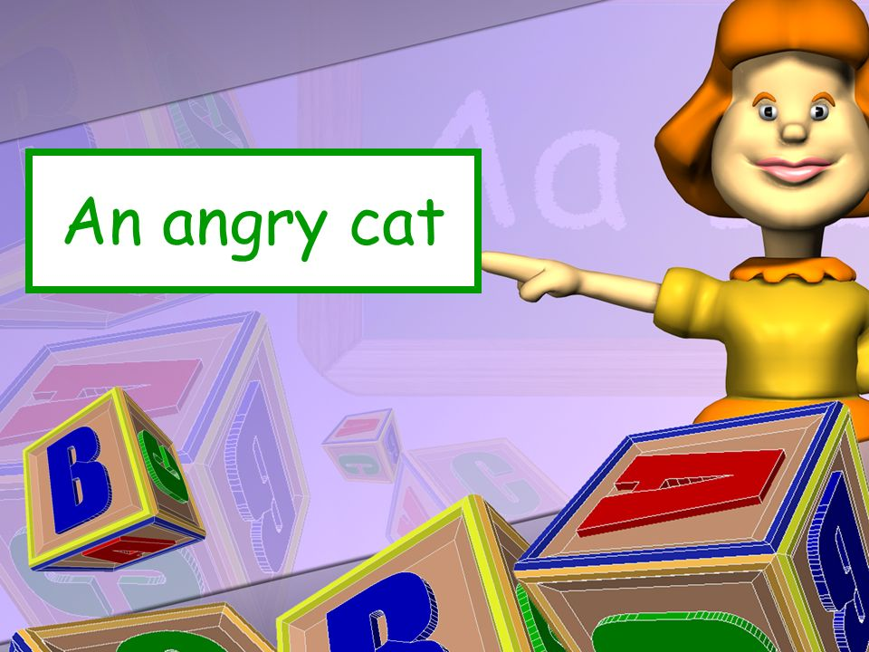 An angry cat