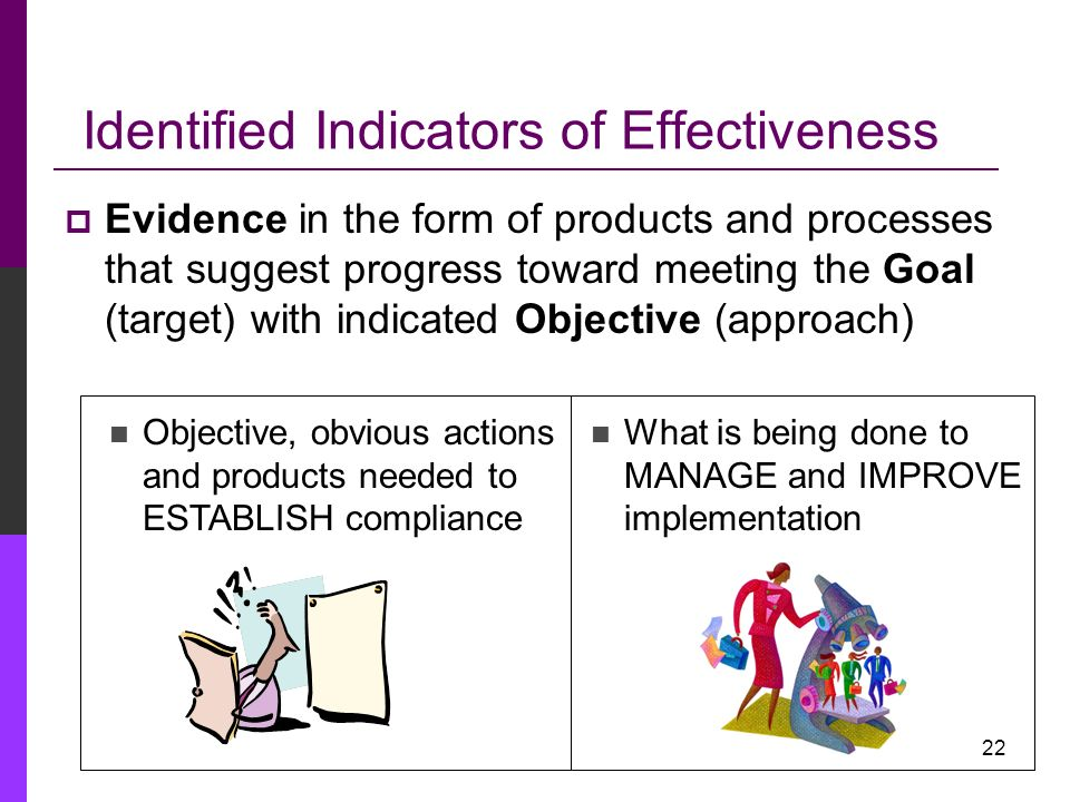 Identified Indicators of Effectiveness