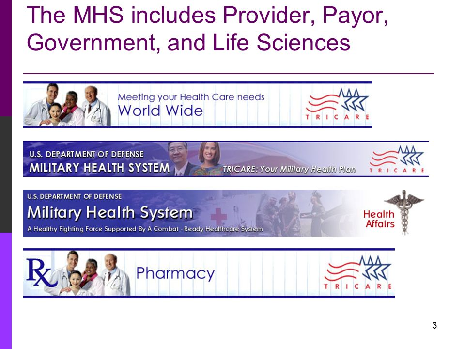 The MHS includes Provider, Payor, Government, and Life Sciences
