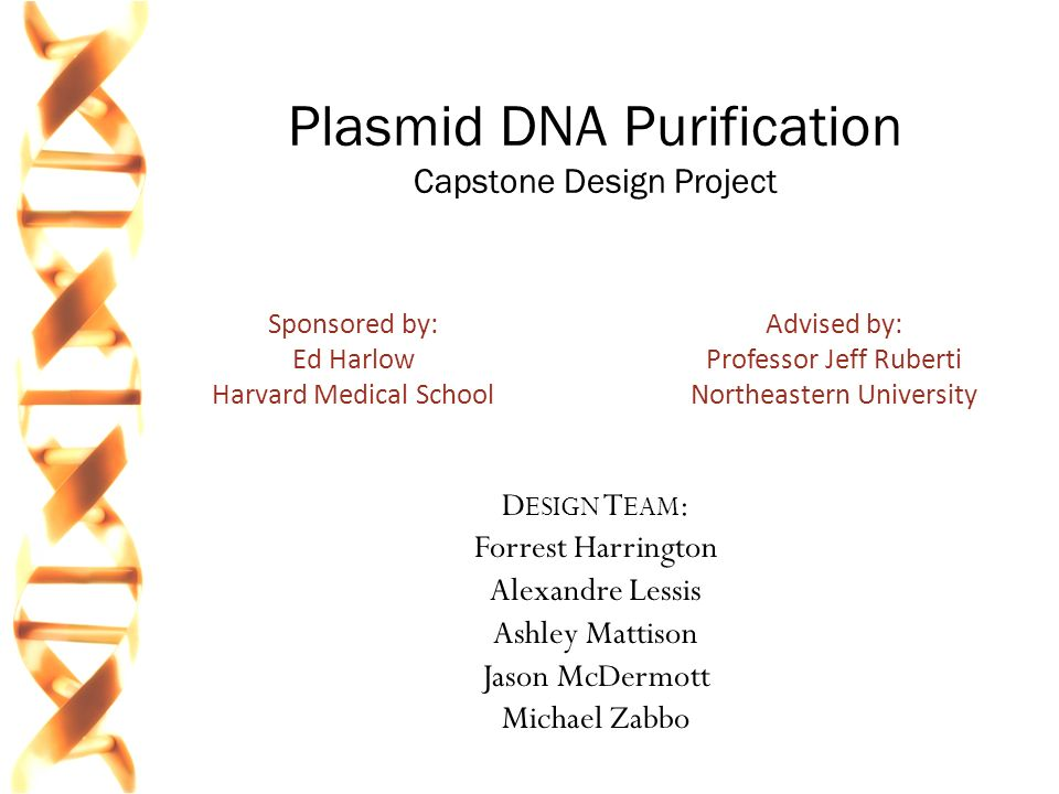 "an experiment to purify amplify and visualize a plasmid Diagnostic pcr (to visualize only, and not used further), the following protocol  [ note: a ""master mix"" is often very useful depending on the needs of the  experiment  dna: pcrs of genomic dna are more ""difficult"" than from purified  plasmid."