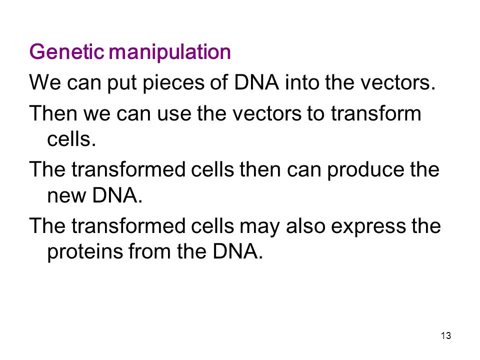 Genetic manipulation We can put pieces of DNA into the vectors. Then we can use the vectors to transform cells.
