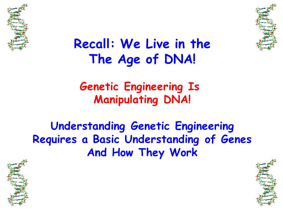 understanding how genetic engineering works from the perspective of the dna Biotechnology and genetic engineering, part of facts on file global issues series, is designed to place itself outside of the wide-ranging biotechnology debate and to provide factual information on the current status of the sci.