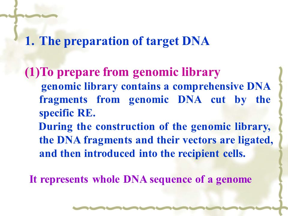genomic library construction - photo #39