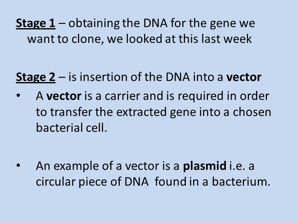 the stages of cloning This approach revealed that changes in gene expression levels occur at  embryonic stages and in adult tissues of mouse clones compared with normal  mice and.
