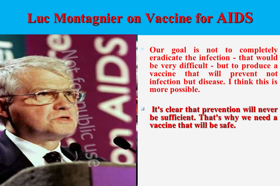 essay on aids vaccine Essay hiv vaccine it takes a village advances and 90,000+ more term papers written by professionals and your peers  a successful aids vaccine would be able to .