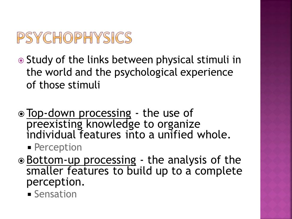 An analysis of the various forms of stimuli