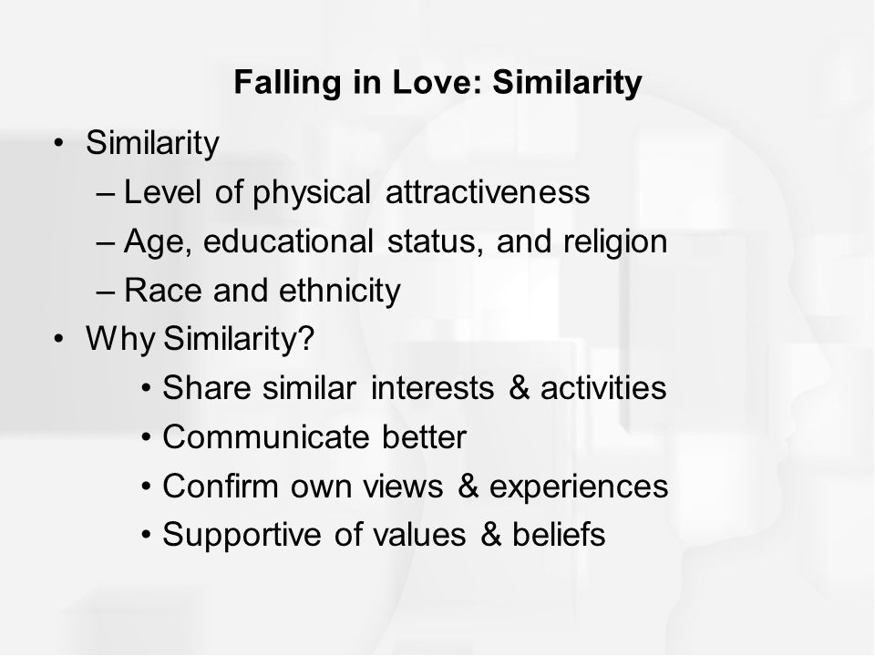 Similarity/Attraction Theory