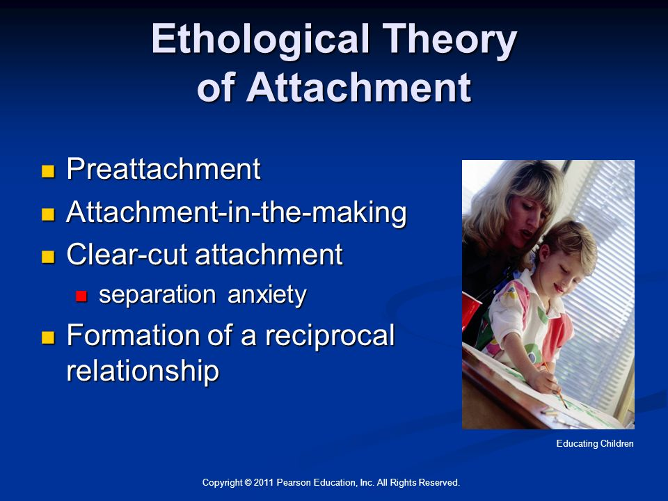 the ethological attachment theory Learn ethological theory of attachment with free interactive flashcards choose from 500 different sets of ethological theory of attachment flashcards on quizlet.