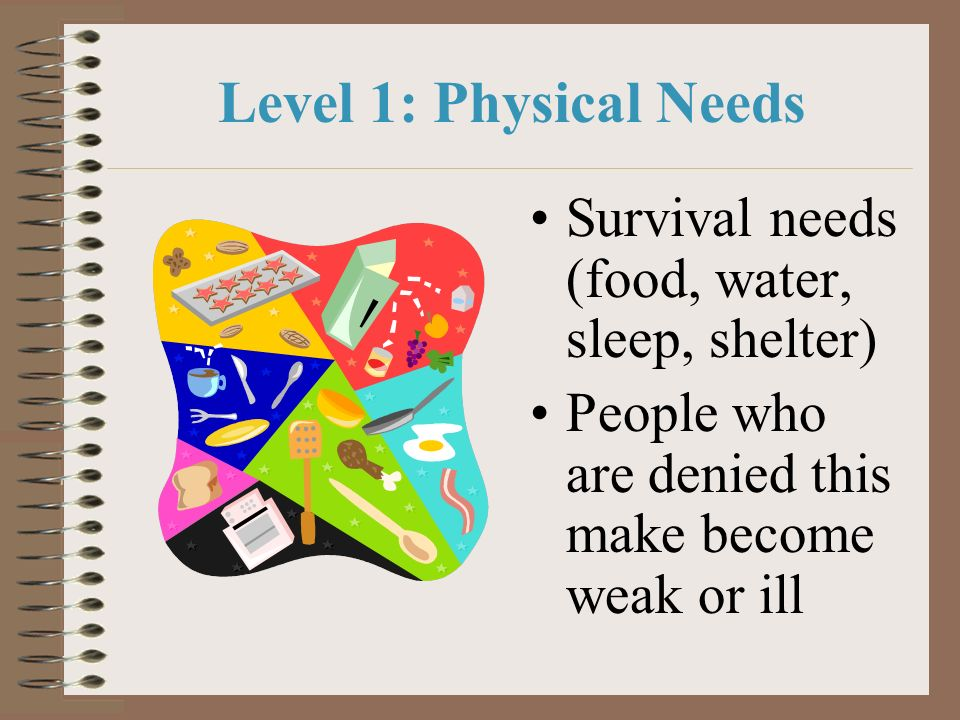 Level 1: Physical Needs Survival needs (food, water, sleep, shelter)