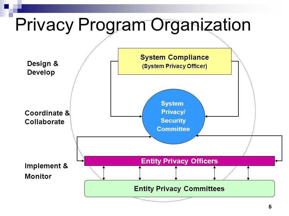 Privacy Program Organization