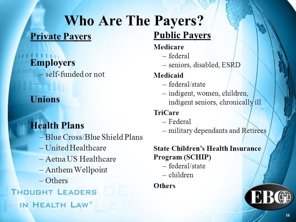 Who Are The Payers Public Payers Private Payers Employers Unions