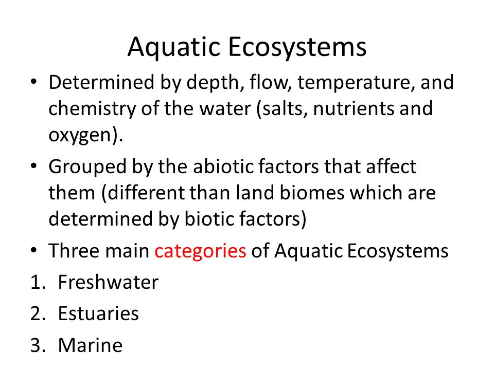 Aquatic Ecosystems Determined by depth, flow, temperature, and chemistry of the water (salts, nutrients and oxygen).
