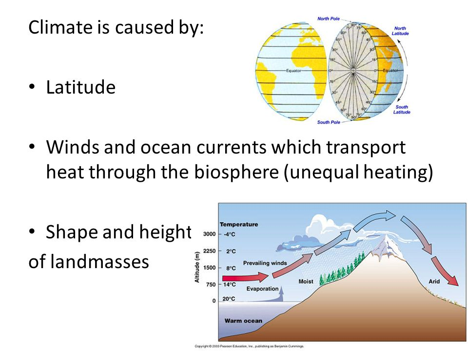 Climate is caused by: Latitude. Winds and ocean currents which transport heat through the biosphere (unequal heating)