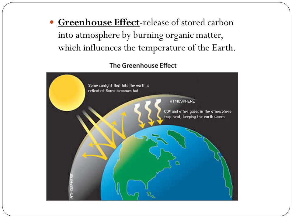 Greenhouse Effect-release of stored carbon into atmosphere by burning organic matter, which influences the temperature of the Earth.